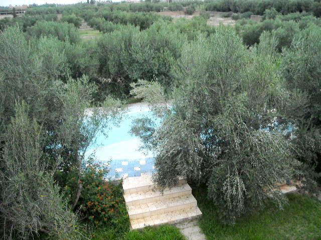 Villa - Maison en location à route de ouarzazate, marrakech15000route de ouarzazate, marrakech15000
